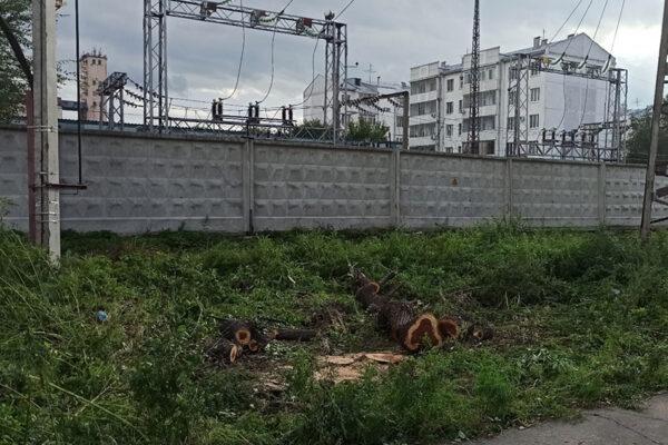 Вырубка кустарника подготовка территории строительства рабочего моста для сооружения опоры №2 правый берег